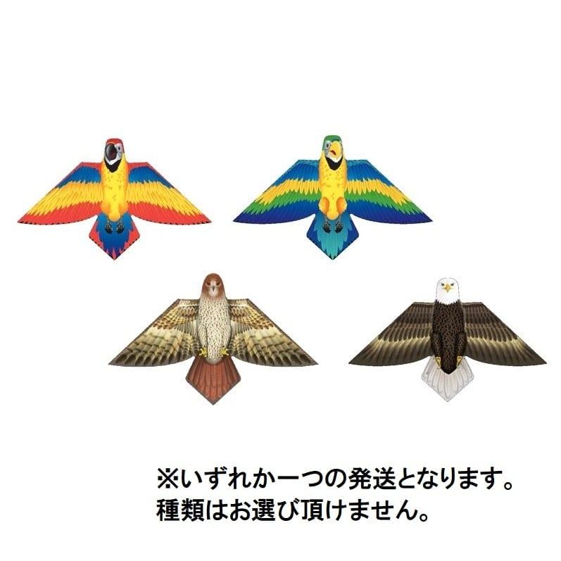 【クリアランス】トイザらス限定 バードカイト(レッドパロット)